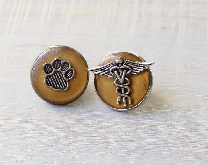 veterinarian pin gift set, set of 2, vet tech gift, lapel pin, dark gold, pinning ceremony, white coat ceremony