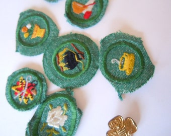 Girl Scout Badges Colorado Springs Chapter Collectible
