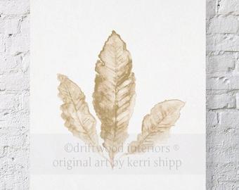 Sea Fan II Art Print in Natural 8x10 - Sea Life Art Print - Coral Art Print - Watercolor Art Print - Giclee Print