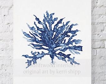 Sea Coral III in Denim Blue Watercolor Print 11x14 - Sea Life Art Print - Coral Art Print - Watercolor Art Print - Giclee Print