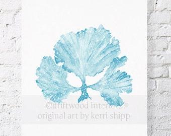 Seaweed II Print in French Blue 11x14 - Sea Life Art Print - Coral Art Print - Watercolor Art Print - Giclee Print