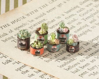 Dollhouse Quarter Scale Succulents in Coffee Cans Kit