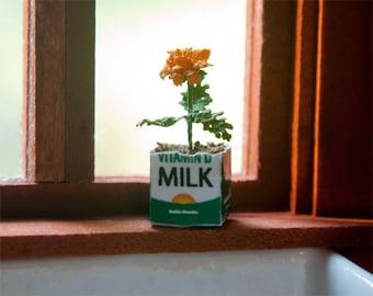 Miniature Marigold in a Milk Carton Kit