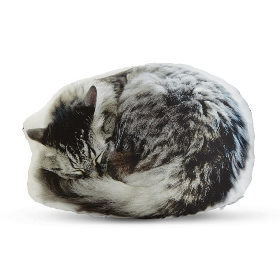Personalized cat pillow portait curled