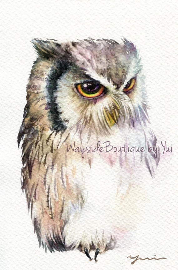 """PRINT – White faced owl Watercolor painting 7.5 x 11"""""""