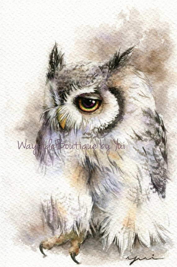PRINT – Classic Owl Watercolor painting 7.5 x 11""