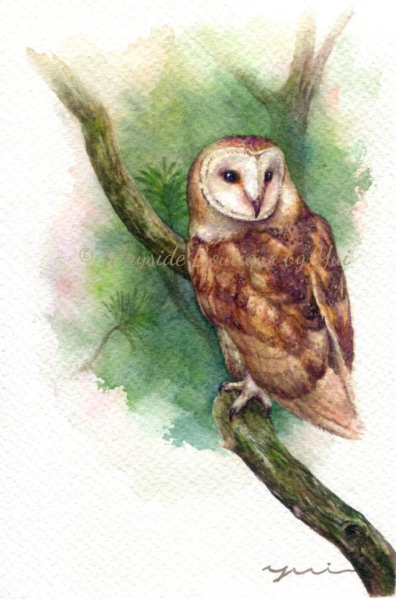 Owl in forest- ORIGINAL watercolor painting 7.5x11 inches