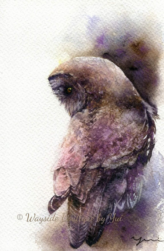 PRINT –Great grey owl Watercolor painting 7.5 x 11""