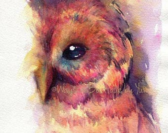PRINT –The owl Watercolor painting 5x7""