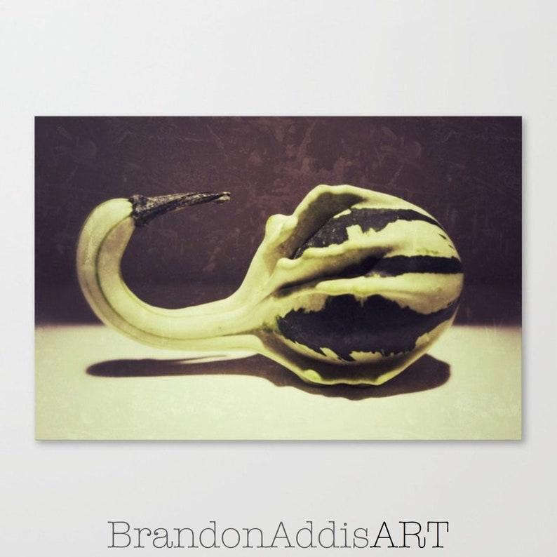 Food Art Art for Kitchen Green Gourd Vegetable Photograph image 0