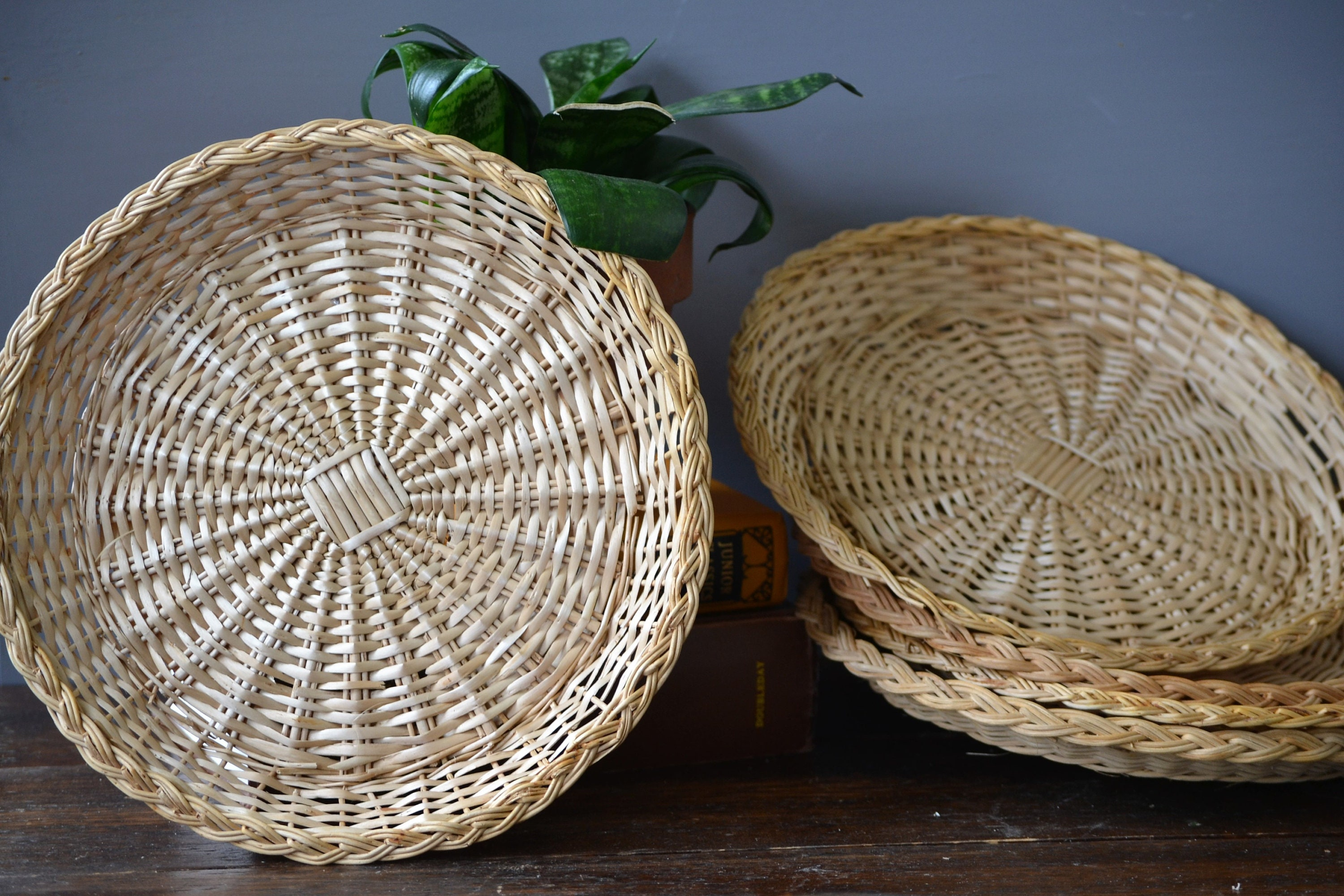 Five Wicker Paper Plate Holders Rattan Wall Decor Picnic Supply