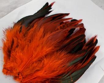 50 Orange feathers strung Schlappen half bronze Dyed 5 to 8 inches