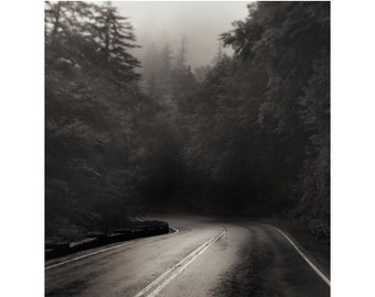 road photography, smoky mountains, Appalachia, moody photography, sepia landscape print, Appalachian Mountain Road