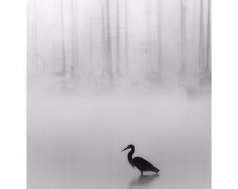 lake house art, heron print, nautical photography, black and white lake print, great blue heron, sailboat print, foggy lake print