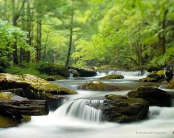 mountain stream photography, smoky mountains, Appalachia, peaceful stream, woodland photography, river, green, stream