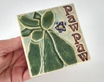 Paw Paw 4x4 Decorative Arts and Crafts MUD Pi tile