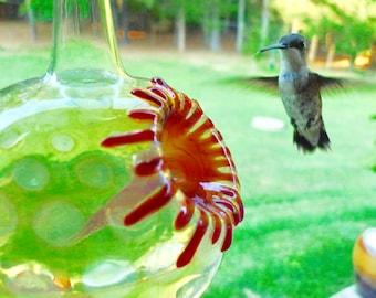 SH- Hummingbird Feeder, The Kennedy Style Hummingbird Feeder, The Original One Piece Drip-less Feeder/Silver Hobnail. Free Gift Wrapping