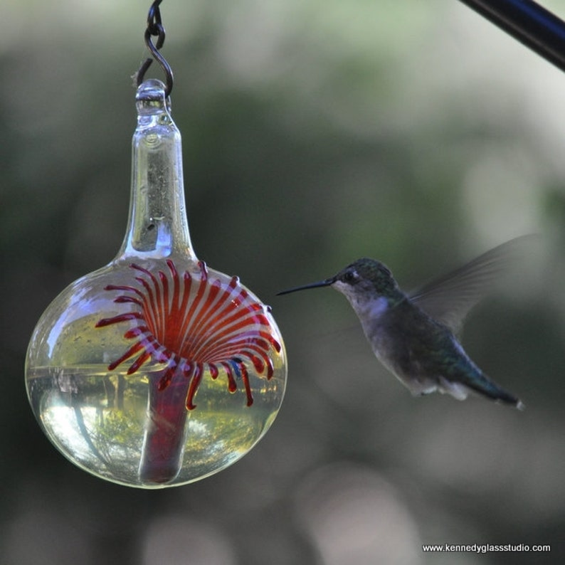 OR The Kennedy Style Hummingbird Feeder The Original One image 0