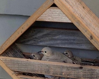 Ready to ship in 3-5 days. Dove Nesting Box or rustic Shelf redwood