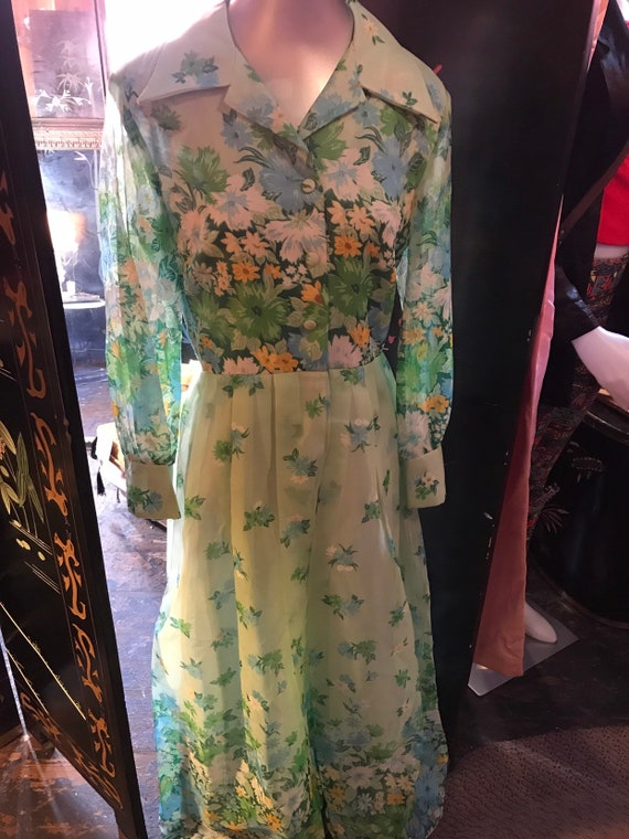 Vintage Green Chiffon Maxi Dress. 1960's Acclaim B