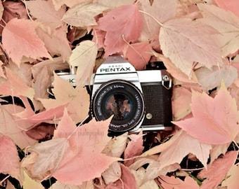 Camera Print, Vintage Camera Art, Vintage Camera Decor, Autumn Print, Still Life Camera Print, Fall Print, Retro Camera Poster, Leaves Art