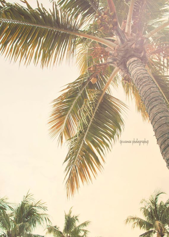 Cartel ImpresiónArte PalmaPalma Árbol De Playa Fotografía Del ArteVeranoDecoración QrChdxtsB