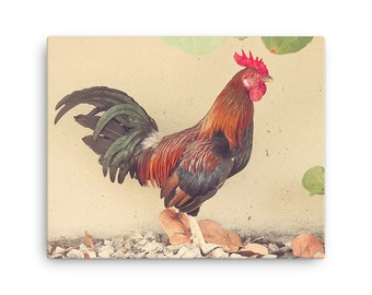 Rooster Canvas, Key West Rooster Art, Key West Rooster Canvas Art, Key West Rooster Wrapped Canvas, Rooster Kitchen Decor, Rooster Decor
