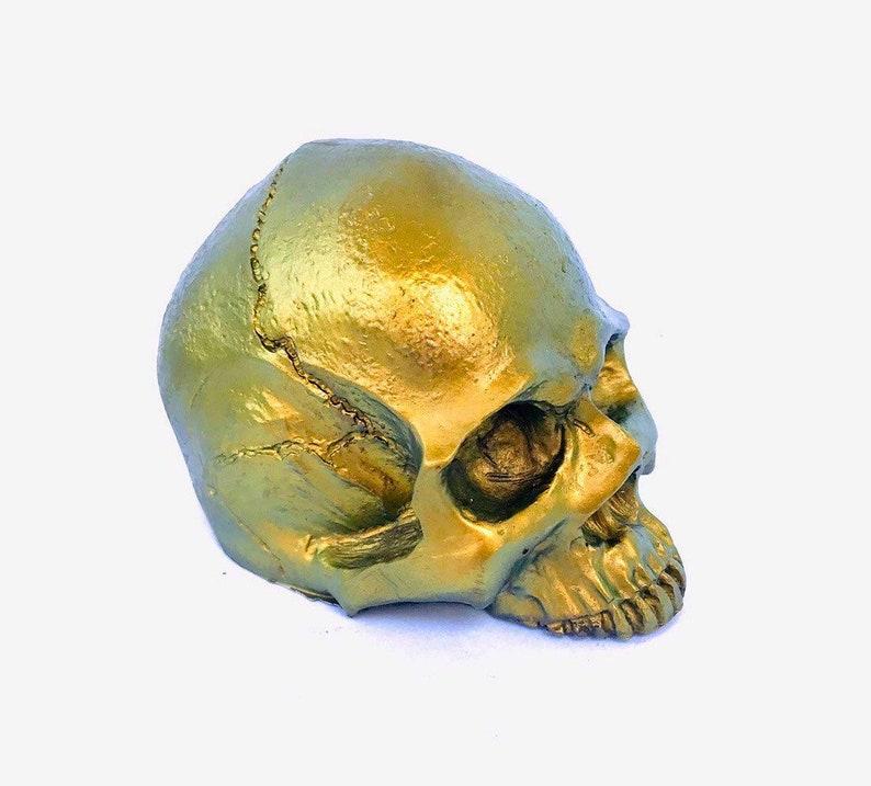Gold Coloured Skull resin skull gothic skull human bones image 0