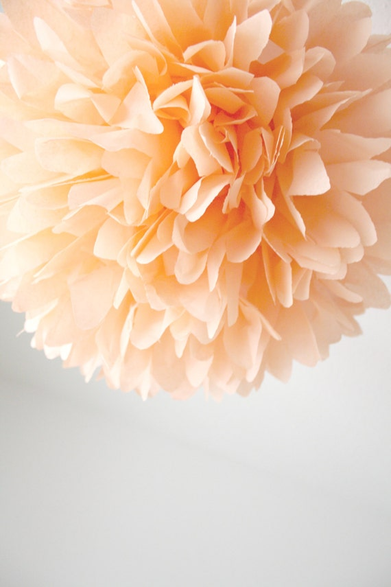 Peach Wedding Decoration 1 Tissue Pompom Flower Birthday Etsy