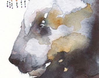 BLACK BEAR aceo watercolor giclee PRINT spirit totem animal 'Late Sleeper' - Free Shipping
