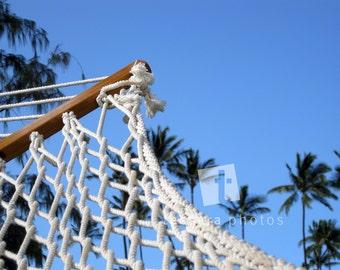 Hawaiian Hammock Photo Print