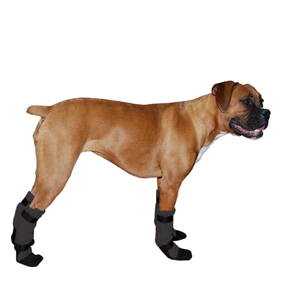 info for uk store exclusive shoes BOXER Dog Booties, Winter Boots, Dog Shoes, Pet Accessories, Dog Clothing,  Dog Clothes, Dog Shoes, Fleece Socks, Dog Boots