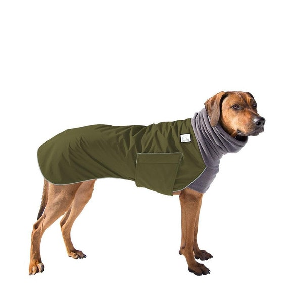 Rhodesian Ridgeback Winter Dog Coat Winter Coat For Dogs Etsy