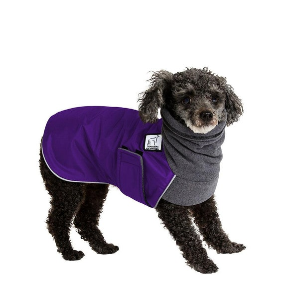 Miniature Poodle Winter Dog Coat Winter Coat Waterproof Dog Etsy