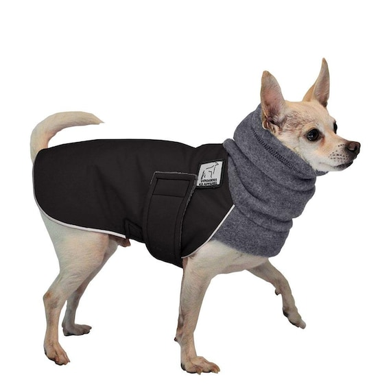 Chihuahua Winter Dog Coat Winter Jacket Waterproof Dog Etsy