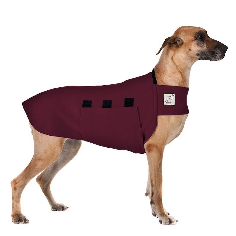 watch 1e263 9e3ec GREAT DANE Tummy Warmer, Fleece Dog Coat, Sweater for Dogs, Dog Sweater,  Dog T-shirt, Dog Clothing, Dog Clothes, Dog Vest