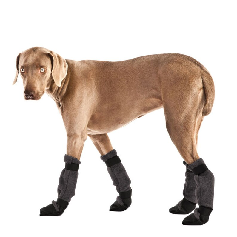 WEIMARANER Dog Booties Winter Boots Dog Shoes Dog Boots  90d1cc935