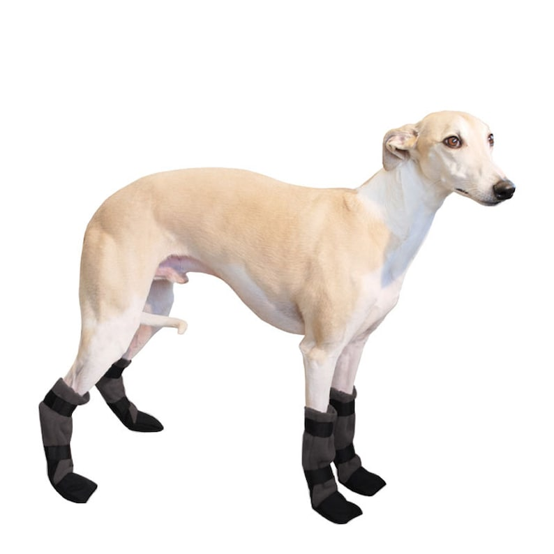 WHIPPET Dog Booties Winter Boots Dog Boots Shoes for Dogs  428b26466