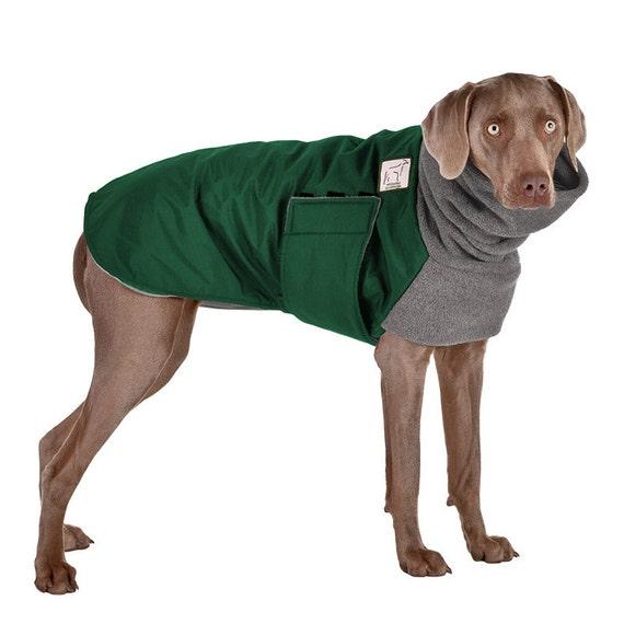 Weimaraner Winter Dog Coat Winter Coat Winter Clothes Etsy
