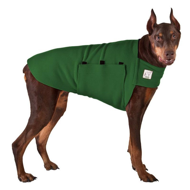 DOBERMAN PINSCHER Tummy Warmer Dog Sweater Fleece Dog Green