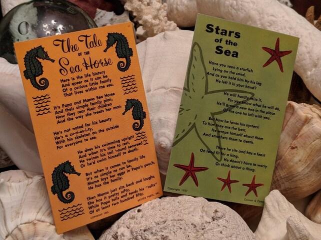 PAIR ORIGINAL 1950s Iconic  Seahorse & Starfish Postcards UNUSED Sea Life Image Supplies Gift Tags Mixed Media Beach Card Scrapbooking Art