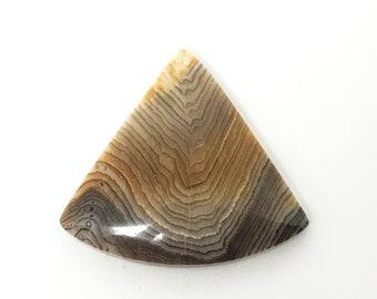 Hells Canyon Petrified Wood Cabochon, Triangular Cut Stone, Fossilized Wood, Great for setting, silversmith inspiration, Destash Cabochon