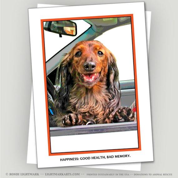 Funny Dachshund Dachshund Greeting Card Happiness Etsy