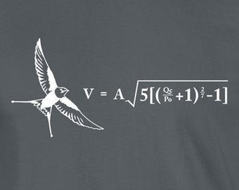 Formula for the Velocity of an Unladen Swallow Monty Python Tee