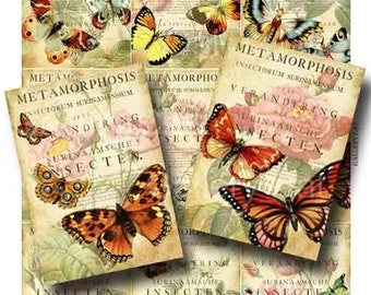 Butterfly Metamorphosis  Digital Collage Sheet Instant Download for Paper Crafts Original Whimsical Altered Art by Gallery Cat CS41