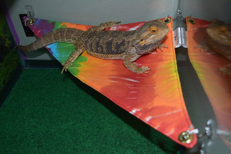 Bearded Dragon Hammock 15x15x21 Lounge Bed larger size!!! -Rainbow/Gay  Pride/Tie Dye/ print