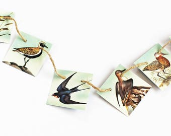 Bird gift, Mini bunting, Mini garland, bird garland, nature bunting, small garland, recycled banner