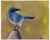 Scrub Jay Oil Art Print: Bird on a Rock Nature Scene
