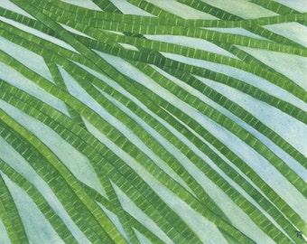 Algae, 8X10 print