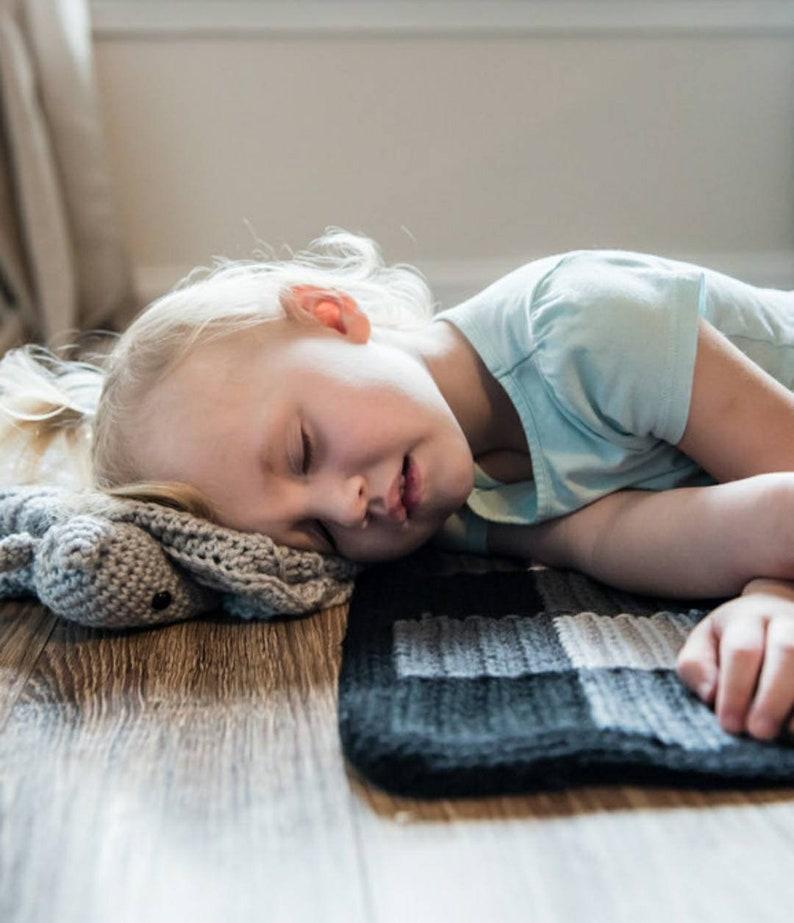 Armadillo Toddler Blanket Crochet Pattern image 0